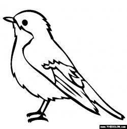 Drawn robin easy