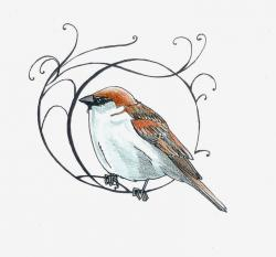 Drawn sparrow simple