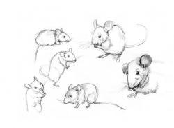 Drawn mice artwork