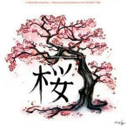 Drawn cherry blossom bonsai tree
