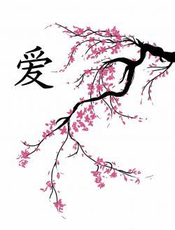 Drawn sakura blossom oriental