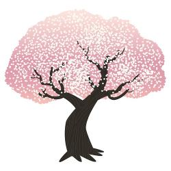 Drawn cherry blossom almond tree
