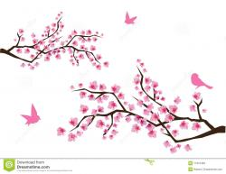 Cherry Tree clipart apple tree branch