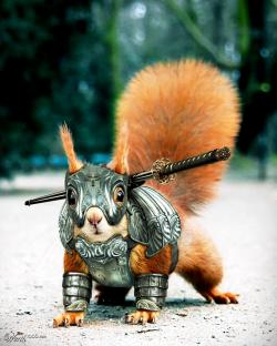 Drawn samurai squirrel