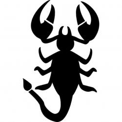 Drawn scorpion icon