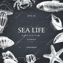 Drawn sea life