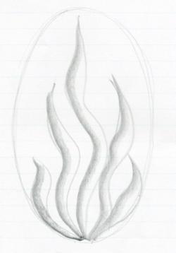 Drawn fire seaweed