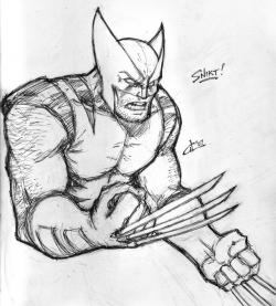 Drawn pice wolverine