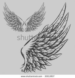 Drawn wings illustration
