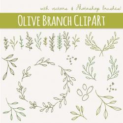 Mediterranean clipart olive branch
