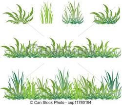 Drawn shrub grass
