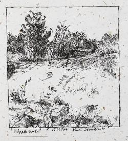Drawn shrub rural area