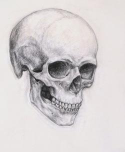 Drawn ssckull