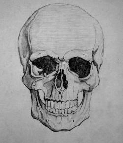 Drawn sleleton skull