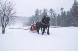 Drawn sleigh