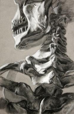 Drawn sleleton charcoal