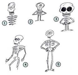 Drawn sleleton funny