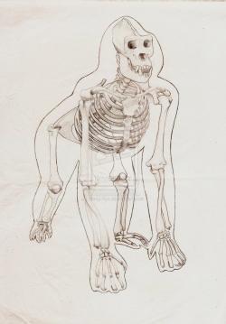Drawn sleleton gorilla