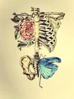 Drawn tattoo rib cage