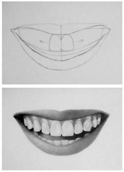 Drawn teeth perfect tooth