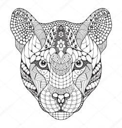 Drawn cougar puma