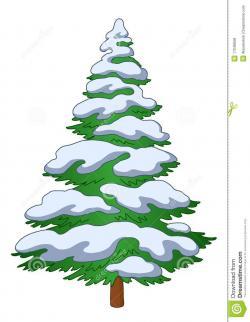 Drawn pine tree snowy tree