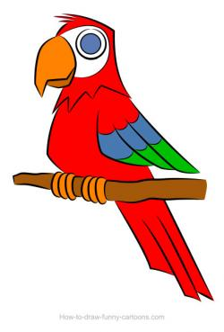 Drawn parrot red parrot