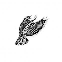 Drawn sparrow basic
