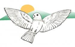 Drawn parakeet bird fly