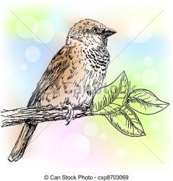 Drawn sparrow quetzal bird