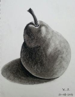 Drawn pear sketch