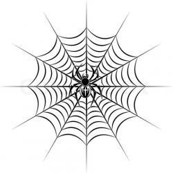 Drawn spider web unusual