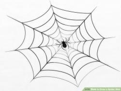 Drawn spider web