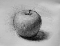 Drawn macbook still life