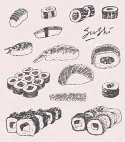 Drawn sushi hand drawn