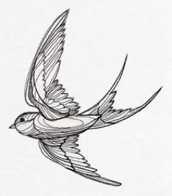 Drawn swallow