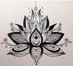 Drawn lotus artistic