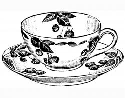 Drawn teapot teacup