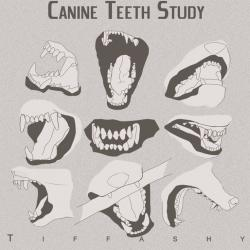 Drawn teeth one