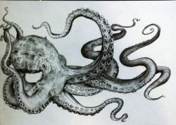Drawn tentacle octopus tentacle