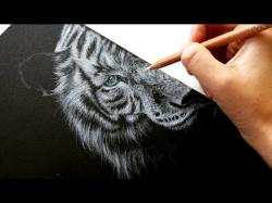 Drawn white tiger cat fur