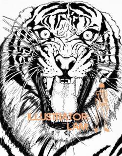 Drawn tiiger fierce tiger