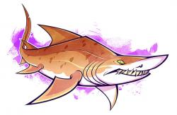 Drawn tiger shark