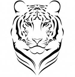 Drawn tigres line art