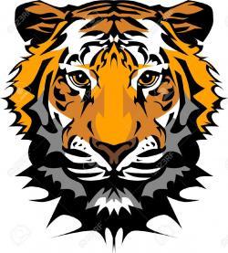 Tigres clipart bengal tiger