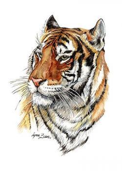 Drawn tiiger tigger