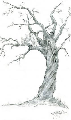 Drawn dead tree