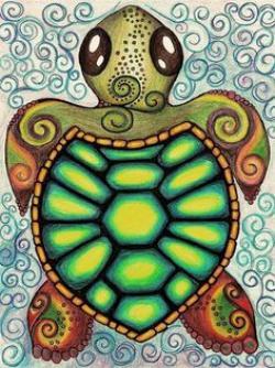 Drawn sea turtle mexico