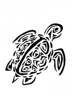 Drawn sea turtle hawaii turtle