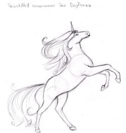 Drawn horse unicorn